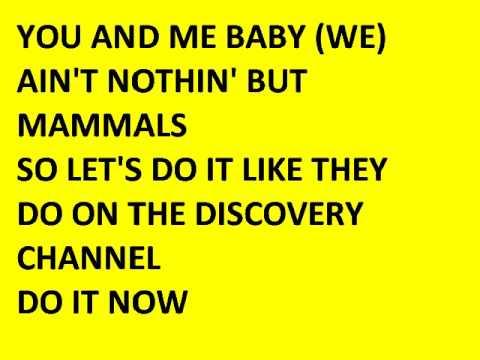 DISCOVERY CHANNEL (lyrics)