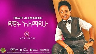 Dawit Alemayehu - Abye Zergaw | አብየ ዘርጋው - New Ethiopian Music 2016 (Official Audio)