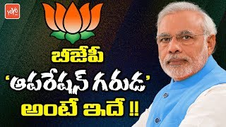 Is BJP Operation Garuda to Prevent Chandrababu Naidu? | BJP Plan on TDP | AP News