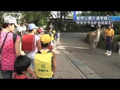 動物園が小学校の通学路に 東京・羽村市(10/09/07)