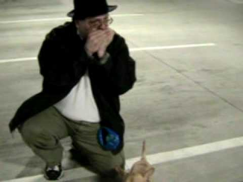 Dancing Chihuahua Duke Blues Easter Bunny Hops HighG Bushman Video