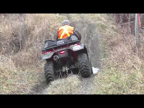 Dam Beavers! Put A Stop To The Honda TRX 350 s!