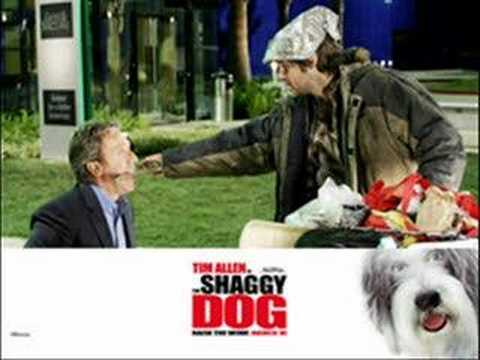 The Shaggy Dog Pictures & Music.