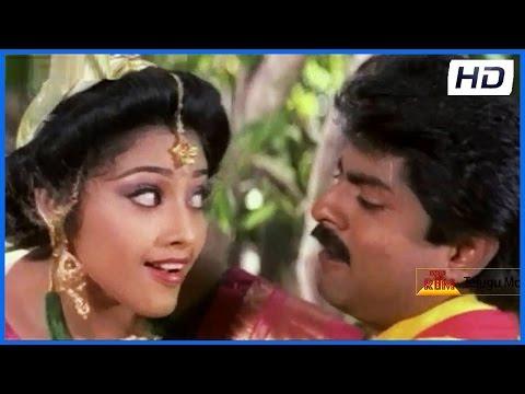 Chilakapacha Kapuram - Telugu Movie Back To Back Superhit Song - Jagapathi Babu,silksmitha video