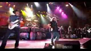 Lynyrd Skynyrd - That's How I like It