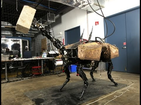 Dynamic Robot Manipulation