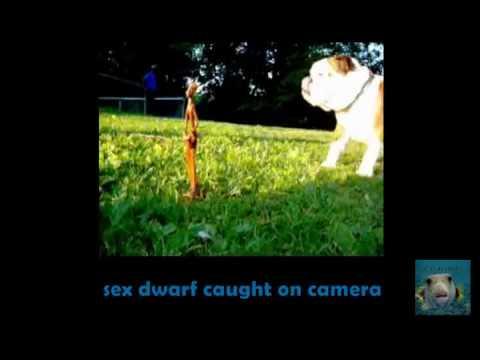 Roswell Sex Dwarf Caught On Camera - Alien Ufo Blue L.e.d.s. Incident (schwarz Zu Blau) 6 video