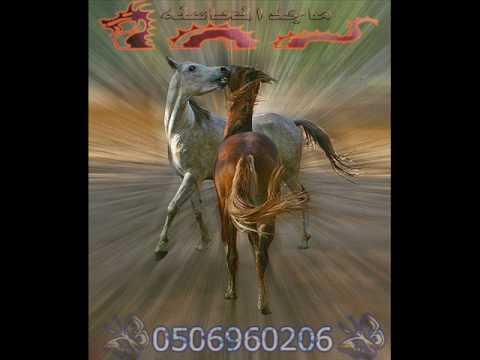 تراث بدوي دحية