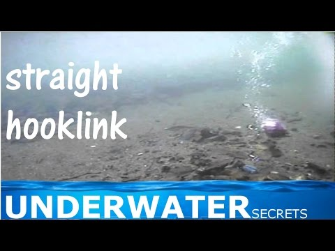 straightened out hooklink underwater carp fishing