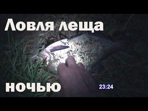 снасть для ловли ловля леща ночью