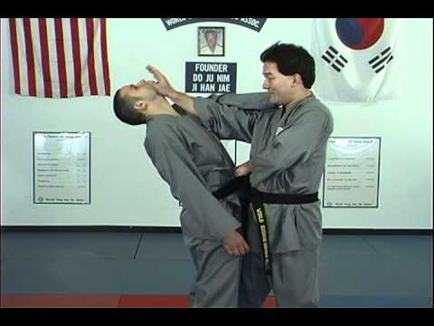 Hapkido Behind Neck Techniques 1 Thru 4, Ji Han Jae Image 1
