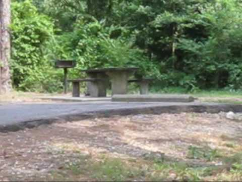 Percy Quin State Park RV Campsites