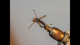 Easy and Effective Stonefly Pattern! Nymph Fly Tying.