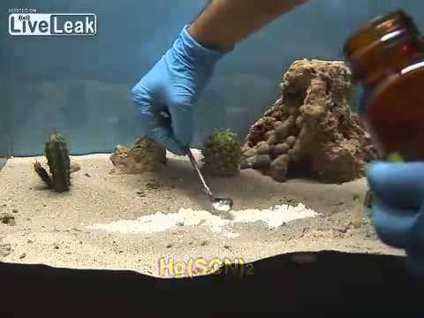 Curioso experimento con mercurio