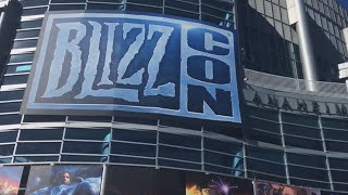 The World Needs Heroes - BlizzCon VLOG