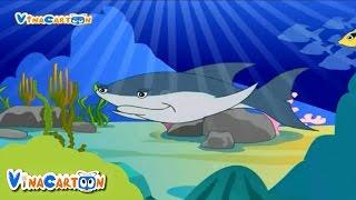 Bé Yêu Động Vật - Cá Mập