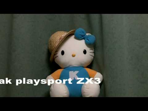 kodak Zi8 vs Playsport ZX3 Angle comparison 画角の比較