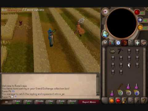 Runescape Imp Hunting Guide