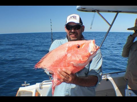 Deep Sea Fishing Video Queensland Big 4 & 5 way hookups!!