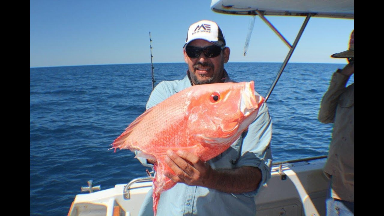 Deep sea fishing video queensland big 4 5 way hookups for Fishing at the sea