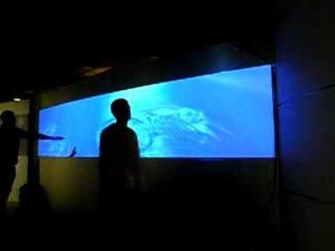 Lenovo Water Wall Projection Youtube