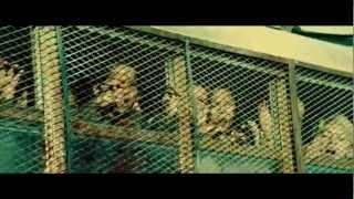 download lagu Top 10 Hot Shot Zombie Kills Resident Of Evil gratis