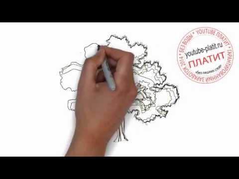 Как нарисовать старый зеленый дуб карандашом