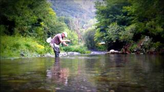 Tenkara fishing early morning