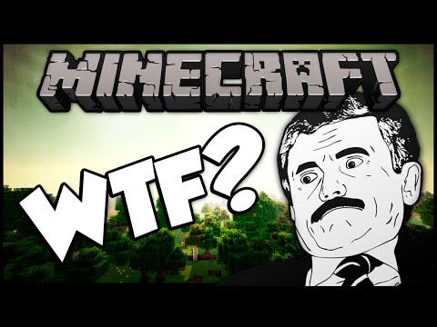 WTF IS THIS Minecraft Hunger Games Funny Moments