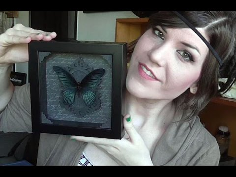 Josh Hydler Designs UNBOXING - Butterfly Display Mount