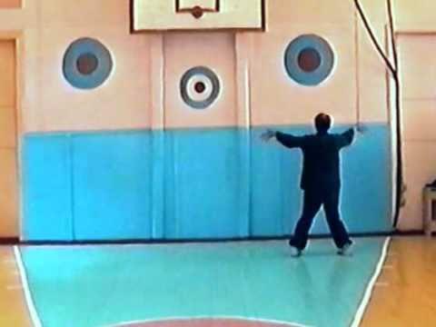 В. М. Каргополов, 2002 г. Даосский круг. Часть 1