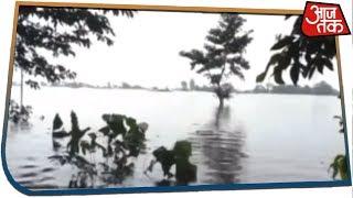 Assam Floods Disturbs Wildlife As 70% Of Kaziranga National Park Submerged Under Water