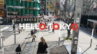 Beautiful Japan ~ Day #1