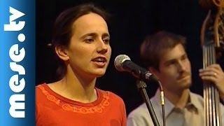 Makám együttes: Elszökött a kis teknősöm (koncert gyerekeknek)