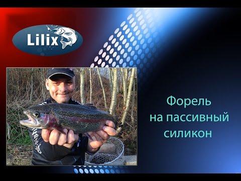 рыбалка на силикон форель