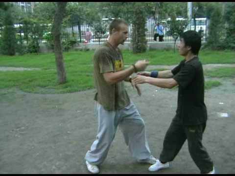 Bagua Zhang Applications: Master Han Yanwu DVD Image 1