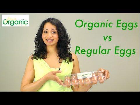 Organic Eggs vs Regular Eggs