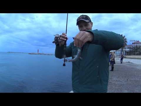 рыбалка видео в сочи