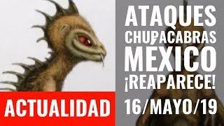 URGENTE I REAPARECE la ENTIDAD BIOLÓGICA ANÓMALA en México. ¡Autoridades la desestiman!