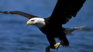 Vídeo 81 de Ouvir e Crer