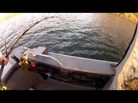 Sturgeon Fishing 01 05 2014