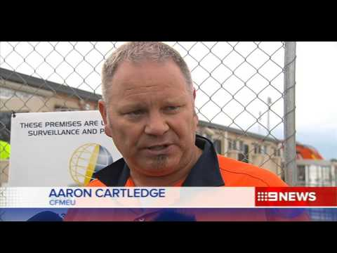 RAH Cranes | 9 News Adelaide