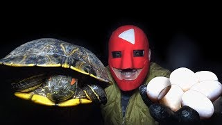 [우마] 붉은귀거북을 잡아 먹어보자!!(ft.프리모) Catch and Cook WORLD'S MOST INVASIVE TURTLE!!!! Red Eared Sliders!!