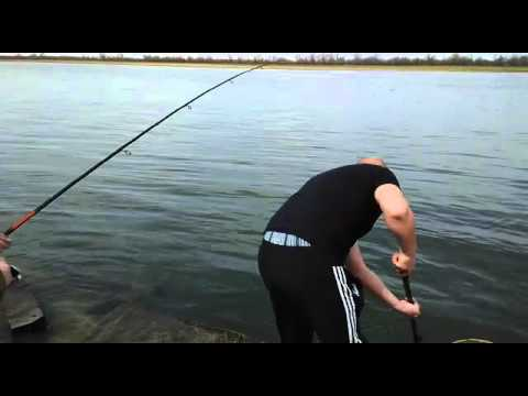 где ловить рыбу в коми