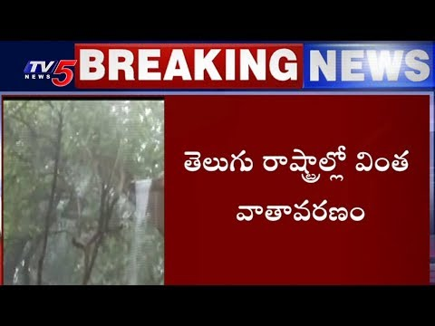 తెలుగు రాష్ట్రాల్లో వింత వాతావరణం | Telugu States Weather Report | TV5 News