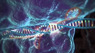 download lagu Genome Editing  Crispr-cas9 gratis