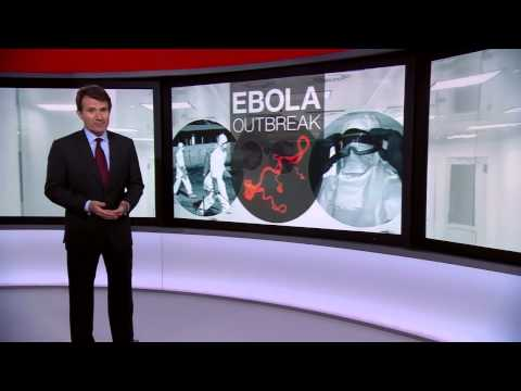 Ebola  The challenge of tackling the virus   BBC NEws