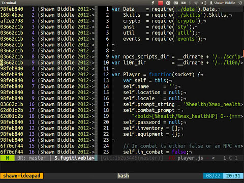 Vim Training Class 4 - Customizing and Extending Vim