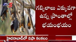 హైదరాబాద్లో నిఫా వైరస్ కలకలం..! | Nipah Virus Symptoms Found In Hyderabad
