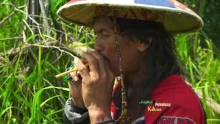 Download Lagu JEJAK PETUALANG - HIDUP BERSAMA SUKU DAYAK DI PERBATASAN UTARA INDONESIA (13/3/17) 3-3 Gratis STAFABAND